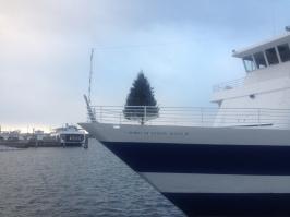 burlington harborwalk 5