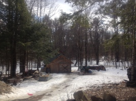 maple sugaring 16