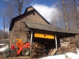 maple sugaring 6