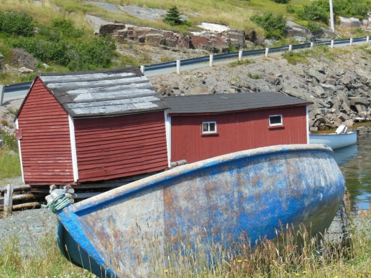 newfoundland summer travels 12
