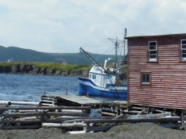 newfoundland summer travels 5