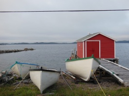 newfoundland summer travels 8