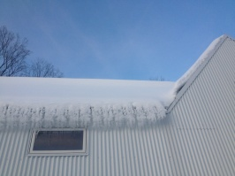 winter medley 6