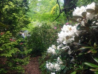 north hill gardens 8
